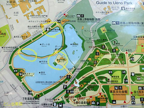 上野恩賜公園 で ポケモン GO