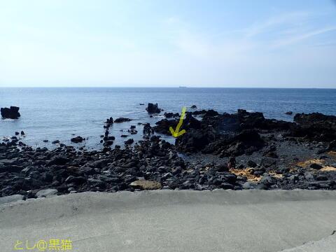 伊豆大島 1泊2日 3ビーチ+1ナイト、2ビーチ 計6本