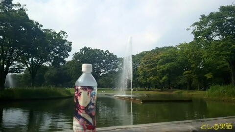 C90 コミックマーケット 夏コミ から 代々木公園 ポケモン GO