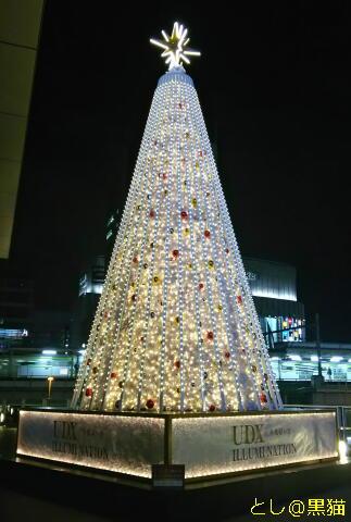 UDXビルのツリー