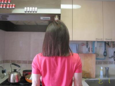 BEFORE : 姫髪アリのロング