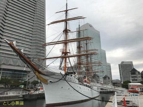 帆船 日本丸