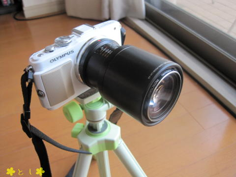 M.ZUIKO DIGITAL ED 60mm f2.8 + レンズフード(LH-49)