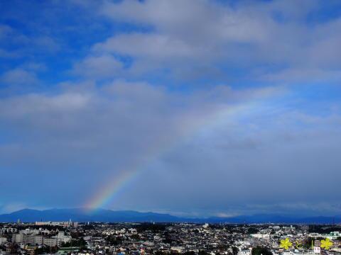台風一過、虹