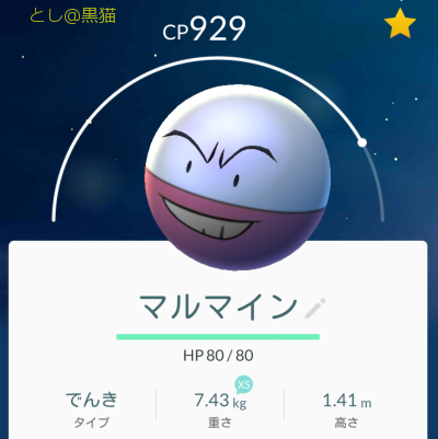 10日ぶりの 《ガチ》 ポケモン GO